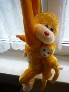 Ein Geschenk von Xie Shifu